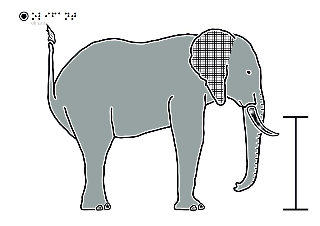 Olifant-fout-met-staart-omhoog-1.pdf-1024x724