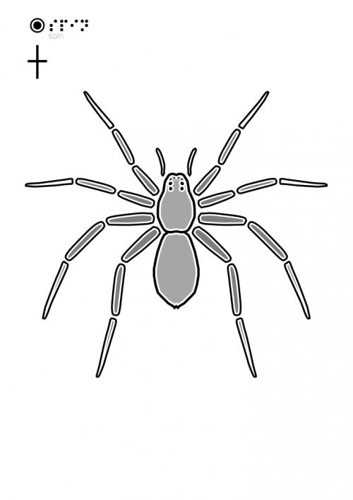 Spin-2.pdf-723x1024