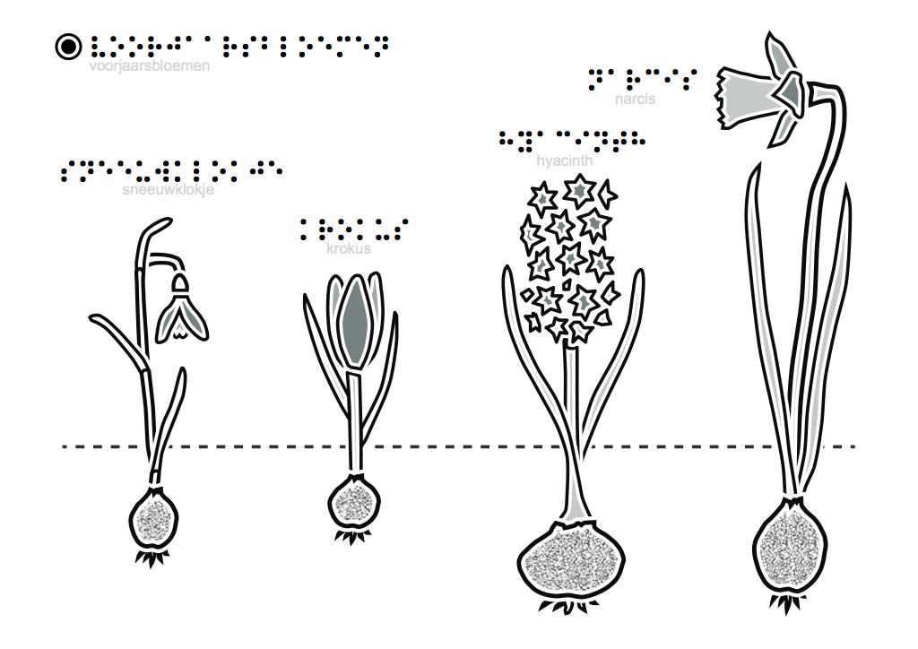 tactiele tekeningen voorjaarsbloemen