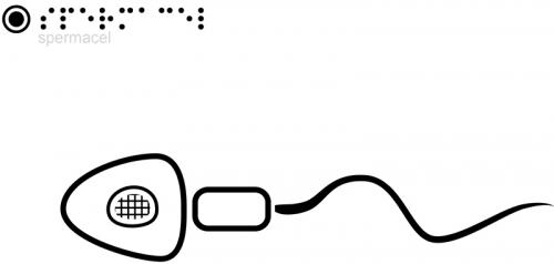 Spermacel